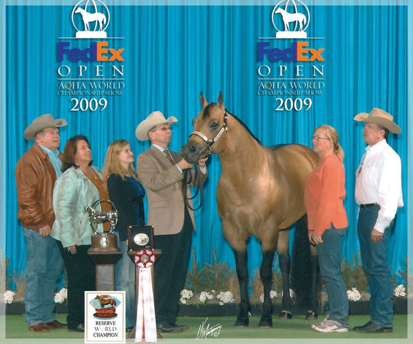 2009 AQHA RES. WORLD CHAMPION SHOWN BY TED TURNER