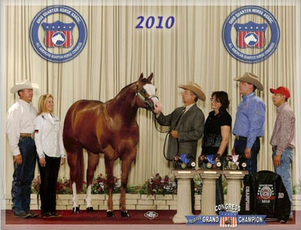 2010 AQHA Congress - 1st Place under all judges in Amateur 2YO Stallions and in the Limited Division. Reserve Grand Champion Congress Stallion! 2010 Congress Reserve Champion in Open 2YO Stallions