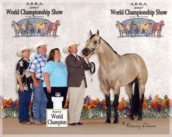 2007 ABRA RESERVE WORLD CHAMPION SHOWN BY ROSS ROARK