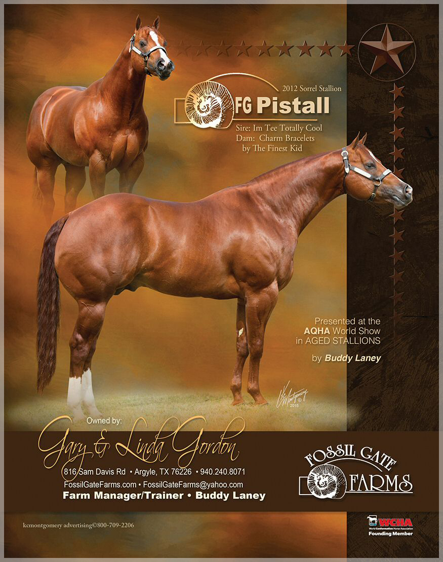 FG PISTALL Sired by IM TEE TOTALLY COOL