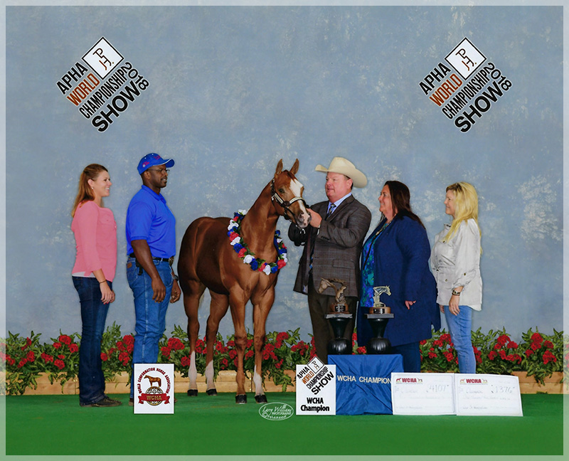 FG Xxpectations 2018 APHA WCHA World Show