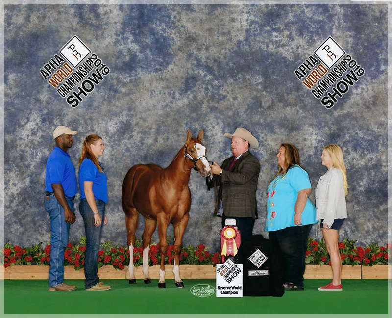 2019 APHA World Show FG Sumi Reserve World Champion weanling filly by Execute and Phenomenal MS