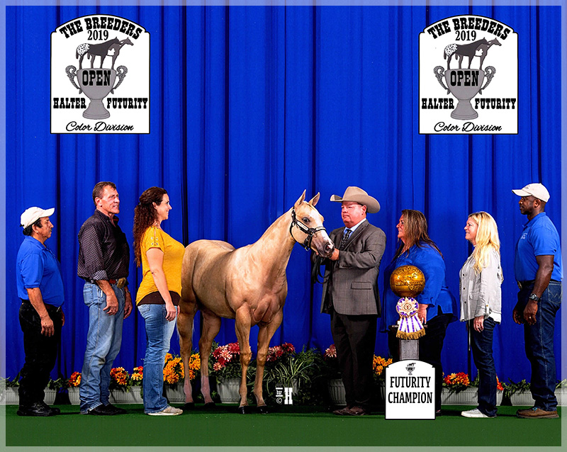 2019 BHF champion weanling colt color division open FG HYPNOTIZING by Execute and FG A Tru Heiress