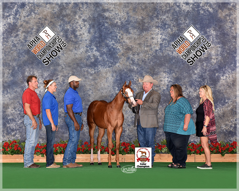 2019 WCHA Color Champion FG Her Majesty sire Very Cool dam I Execute Class